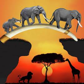 The African Elephant Family by Glenn Holbrook