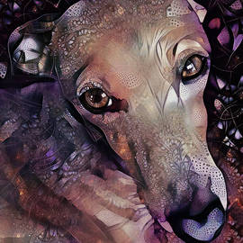 The Allure of Greyhounds by Peggy Collins