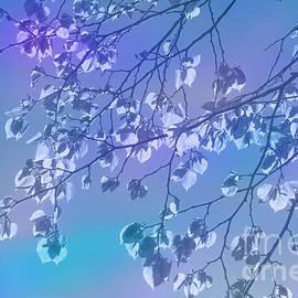 The awakening of spring by larisa Fedotova