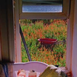 The Broken Window by Judy Kennedy