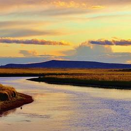 The bend in the river  by Marla Steinke