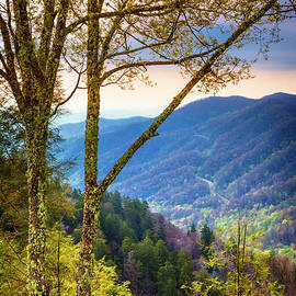 The Blue Ridge Mountains at Newfound Gap by Debra and Dave Vanderlaan