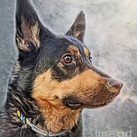 The Boy by Abbie Shores