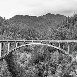 The Bridge At Leggett by Mitch Shindelbower