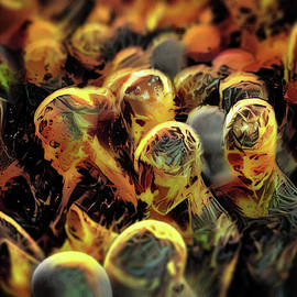 The burning crowd by Scott Smith