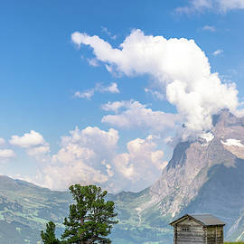 The cabin, the tree and the Alps - II by Luis GA - Lugamor