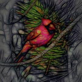The Cardinal 3 by Ernie Echols