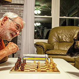 The Chess Match by Jim Cook