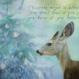 The Christmas Feeling by Terry Davis