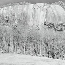 The Climb bw by Dan Carmichael