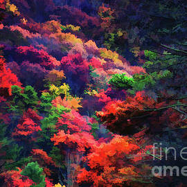 The Colorful Forest by Roberta Byram