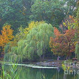 The Colors of Autumn at Oakland Lake by Dora Sofia Caputo