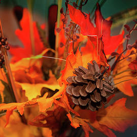 The colors of Fall by Milena Ilieva