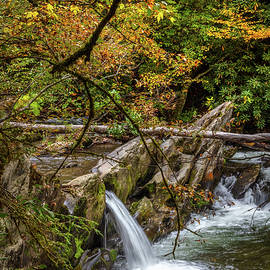 The Colors of Fall Smoky Mountain Waterfall by Debra and Dave Vanderlaan