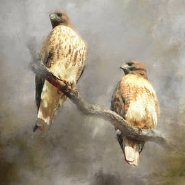 The Couple  by Donna Kennedy