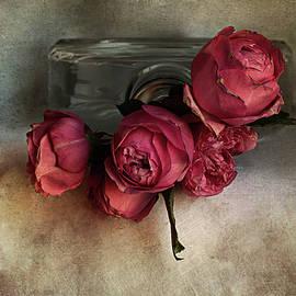 The Delicate Roses by Rita Di Lalla