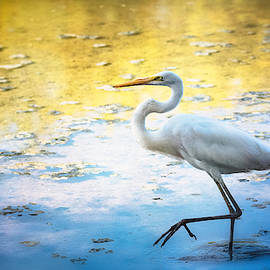 The Egret  by Saija Lehtonen
