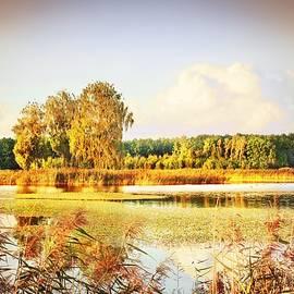 The End of Summer #2 by Slawek Aniol