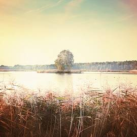 The End of Summer #3 by Slawek Aniol
