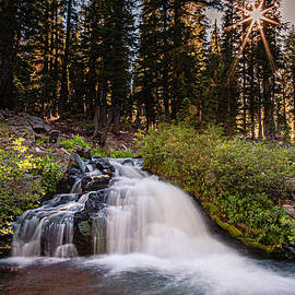 The Falls Before the Falls by Mike Lee