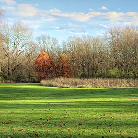 The Field in Fort Island Park by Dennis Lundell