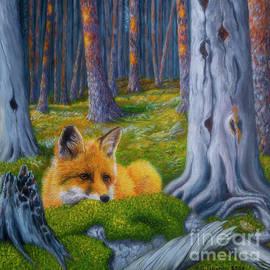 The fox is watching by Veikko Suikkanen