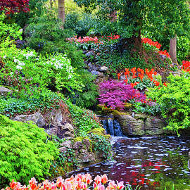 The Gardens by Cathy P Jones
