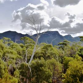 The Great Grampians by Yolanda Caporn