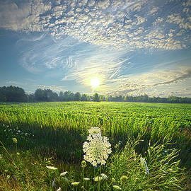 The Great Wide Open by Phil Koch