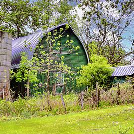 The Green Barn by Susan Buscho