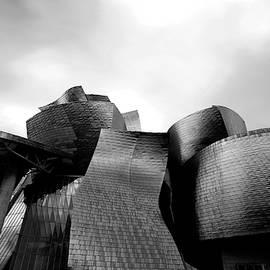 The Guggenheim Museum in Bilbao by Angelika Vogel
