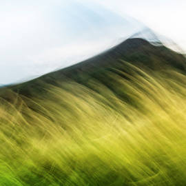 The Hill Behind the Grass by Lucy Brown