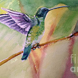 The Hummingbird by Allison Ashton