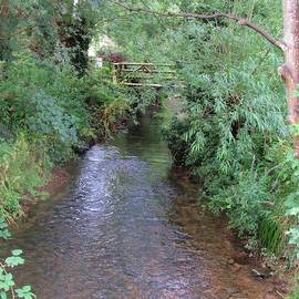 The Infant Thames At Cricklade, Wiltshire, UK by Lesley Evered
