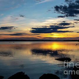 The Last Evening Light by Torfinn Johannessen