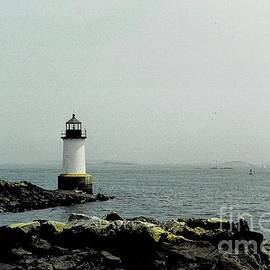 The Lighthouse in Gloucester Harbor by Dora Sofia Caputo