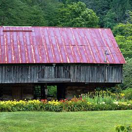 The Lily Barn by David Beard