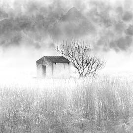 The Little House  by Paulo Viana