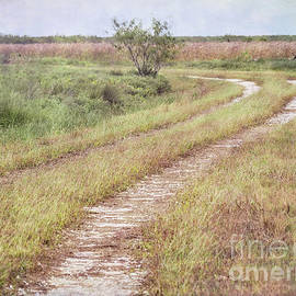 The Long and Winding Road by Gary Richards