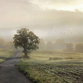 The Long Road Home by Lori Deiter