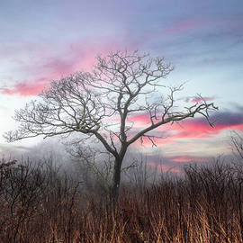 The Magic of Sunset by Debra and Dave Vanderlaan