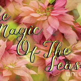 The Magic Of The Season Poinsettias Digital Art by Colleen Cornelius
