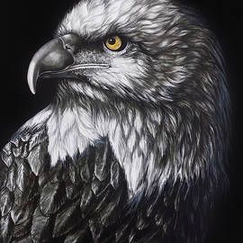 The Majestic Eagle by Asp Arts