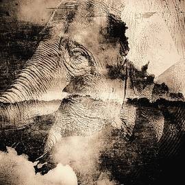 The Memories of an Elephant by Chris Bee Photography