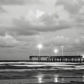 The Monochrome Coast by Terry Walsh