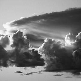 The Monsoonal Snarl by Joe Schofield