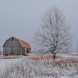 The Old Yellow Barn and Rime Ice by Dale Kauzlaric