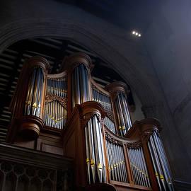 The Organ by Svetlana Sewell