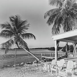 The Palms and the Wedding Chapel  by Rene Triay Photography