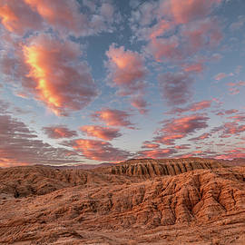 The Pastel Desert by Peter Tellone